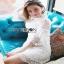 Lady Ribbon Modern Vintage Lace Dress thumbnail 2