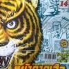หน้ากากเสือ เล่ม 1-14 (จบ)