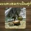 Coffee curcuma scrub soap by..noomham 1 ก้อน thumbnail 165