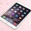 เคสซิลิโคนใสสีต่างๆ (เคส iPad mini 4) thumbnail 3